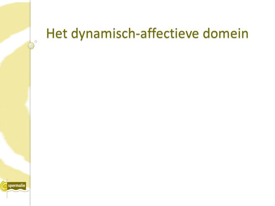 Het dynamisch-affectieve domein