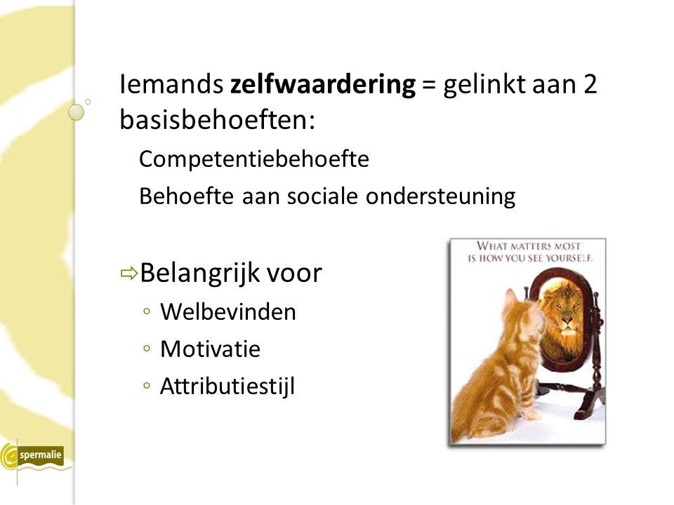 Iemands zelfwaardering = gelinkt aan 2 basisbehoeften: Competentiebehoefte Behoefte aan sociale ondersteuning  Belangrijk voor ◦ Welbevinden ◦ Motivatie ◦ Attributiestijl