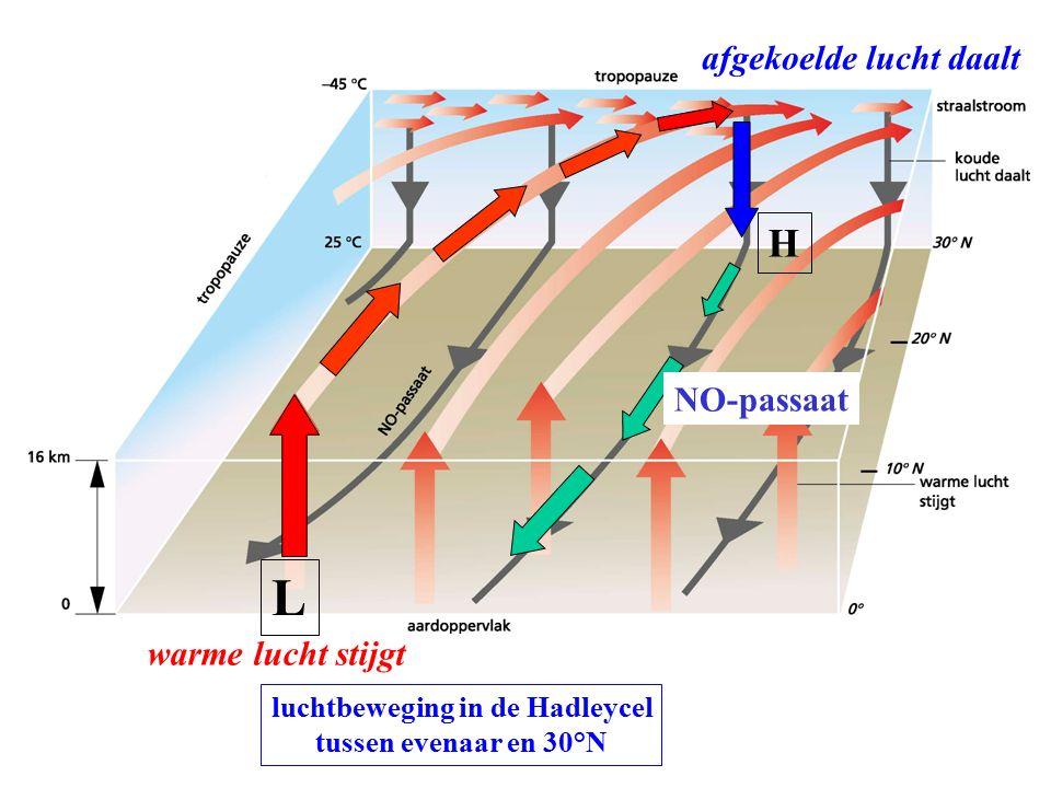luchtbeweging in de Hadleycel tussen evenaar en 30°N NO-passaat warme lucht stijgt L afgekoelde lucht daalt H