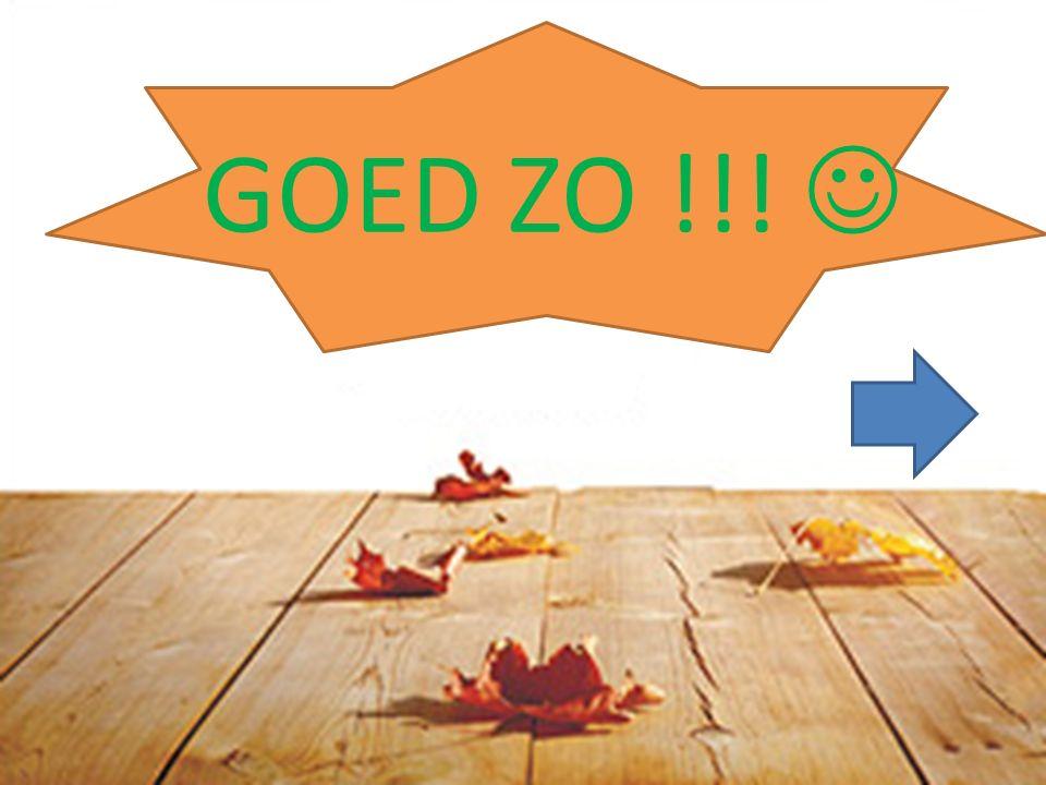 GOED ZO !!!