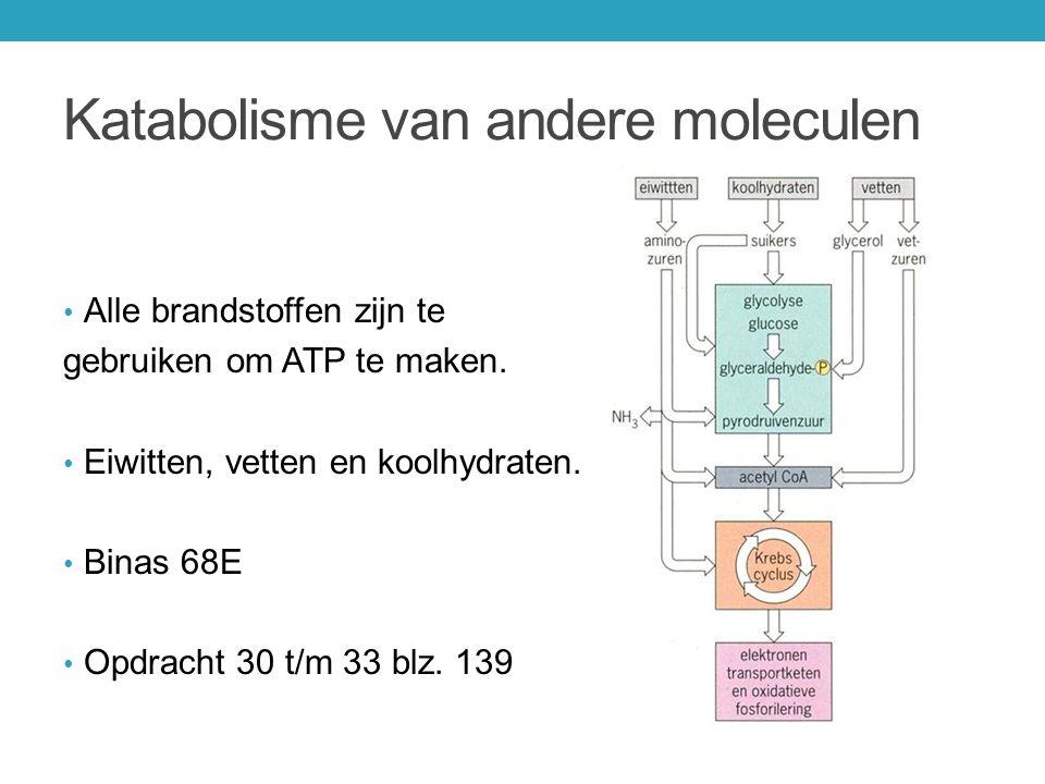 Katabolisme van andere moleculen Alle brandstoffen zijn te gebruiken om ATP te maken. Eiwitten, vetten en koolhydraten. Binas 68E Opdracht 30 t/m 33 b