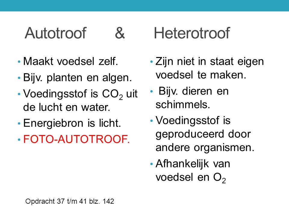 Autotroof & Heterotroof Maakt voedsel zelf. Bijv. planten en algen. Voedingsstof is CO 2 uit de lucht en water. Energiebron is licht. FOTO-AUTOTROOF.