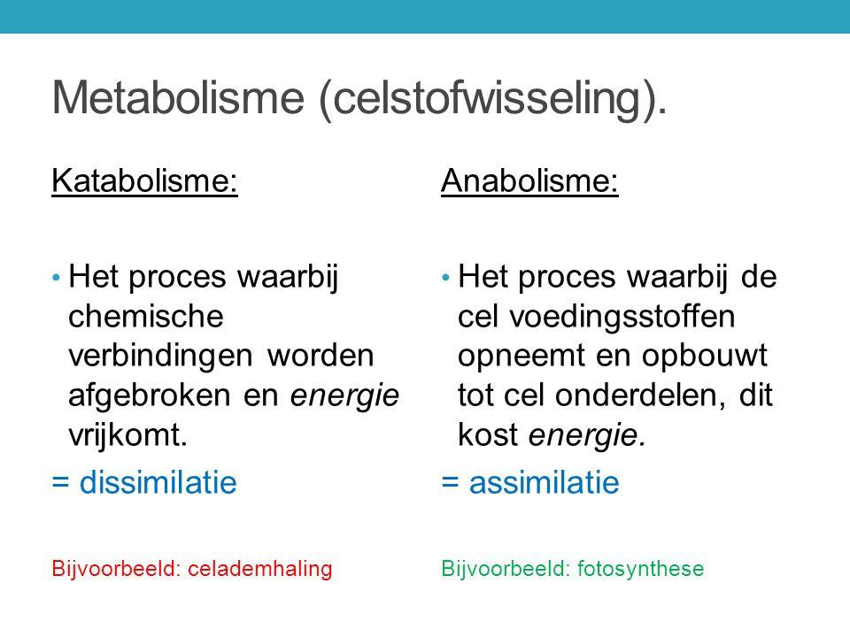 Metabolisme (celstofwisseling). Katabolisme: Het proces waarbij chemische verbindingen worden afgebroken en energie vrijkomt. = dissimilatie Bijvoorbe