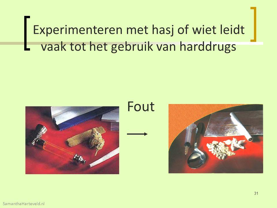 Experimenteren met hasj of wiet leidt vaak tot het gebruik van harddrugs Fout 31 SamanthaHarteveld.nl