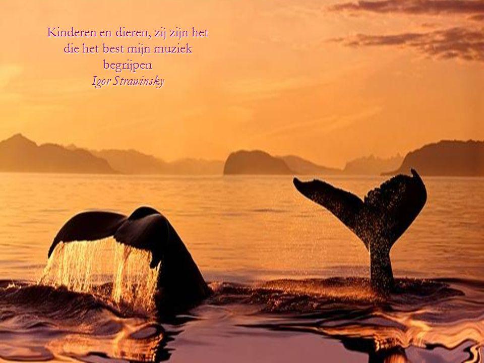 De liefde voor alle levende wezens, is de nobelste kwaliteit van de mens.