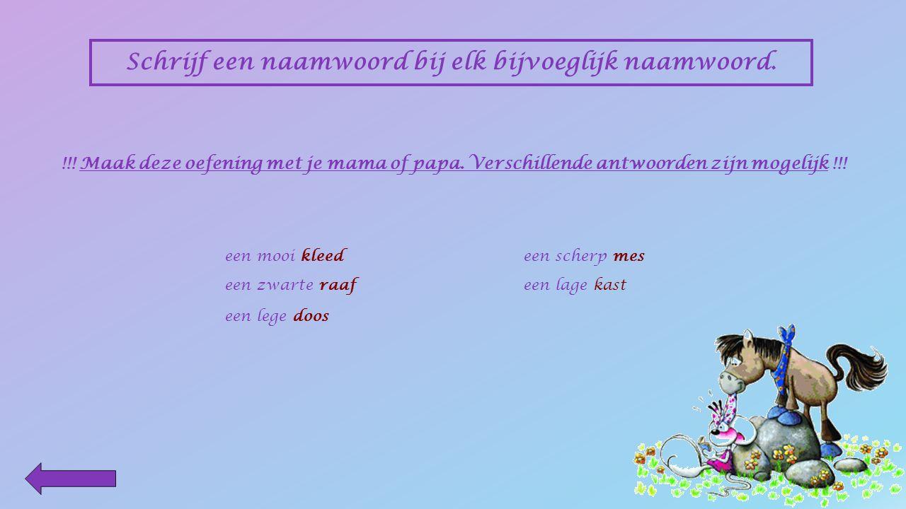 Schrijf een bijvoeglijk naamwoord bij elk naamwoord. !!! Maak deze oefening met je mama of papa. Verschillende antwoorden zijn mogelijk !!! een dik bo