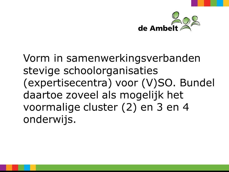 Vorm in samenwerkingsverbanden stevige schoolorganisaties (expertisecentra) voor (V)SO.