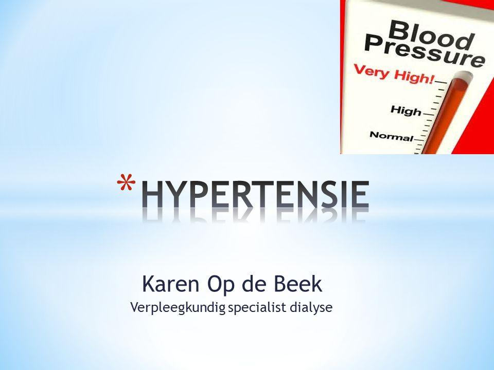 Karen Op de Beek Verpleegkundig specialist dialyse