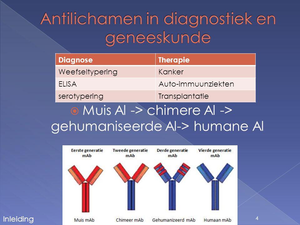  Faag display  Transgene muizen  Gehumanizeerde muizen  Immortalisatie van naïeve B cel bibliotheken  Immortalisatie van primaire B cellen uit patiënten 5 Inleiding
