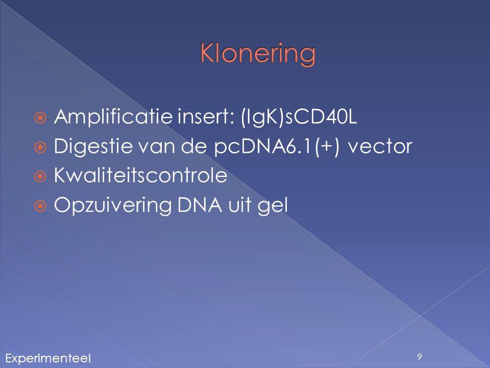  In-Fusion klonering › 15 bp overhang › Homologe recombinatie 10 Experimenteel