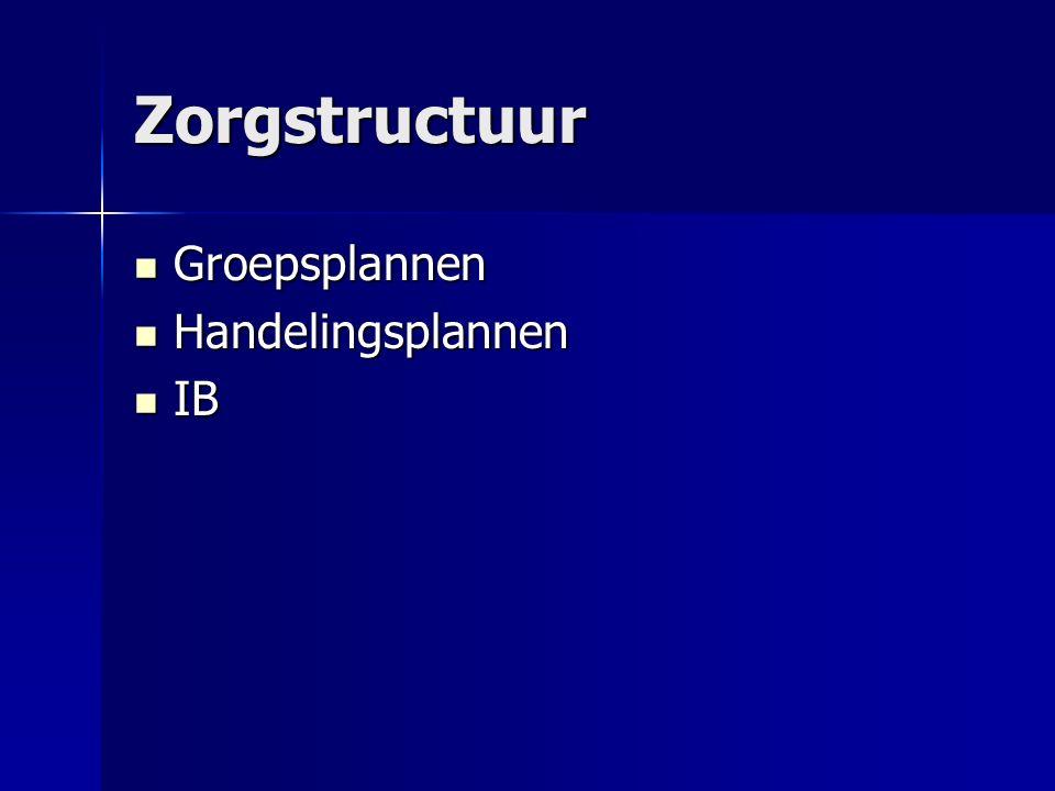 Zorgstructuur Groepsplannen Groepsplannen Handelingsplannen Handelingsplannen IB IB