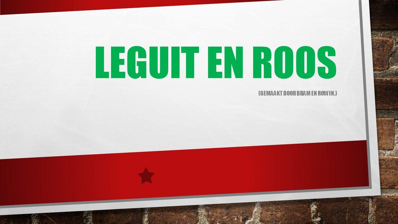 LEGUIT EN ROOS (GEMAAKT DOOR BRAM EN ROWIN.)