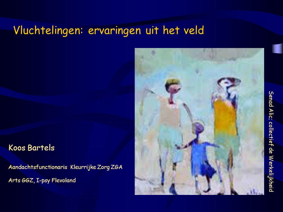 Vluchtelingen: ervaringen uit het veld Senad Alic; collectief de Werkelijkheid Koos Bartels Aandachtsfunctionaris Kleurrijke Zorg ZGA Arts GGZ, I-psy