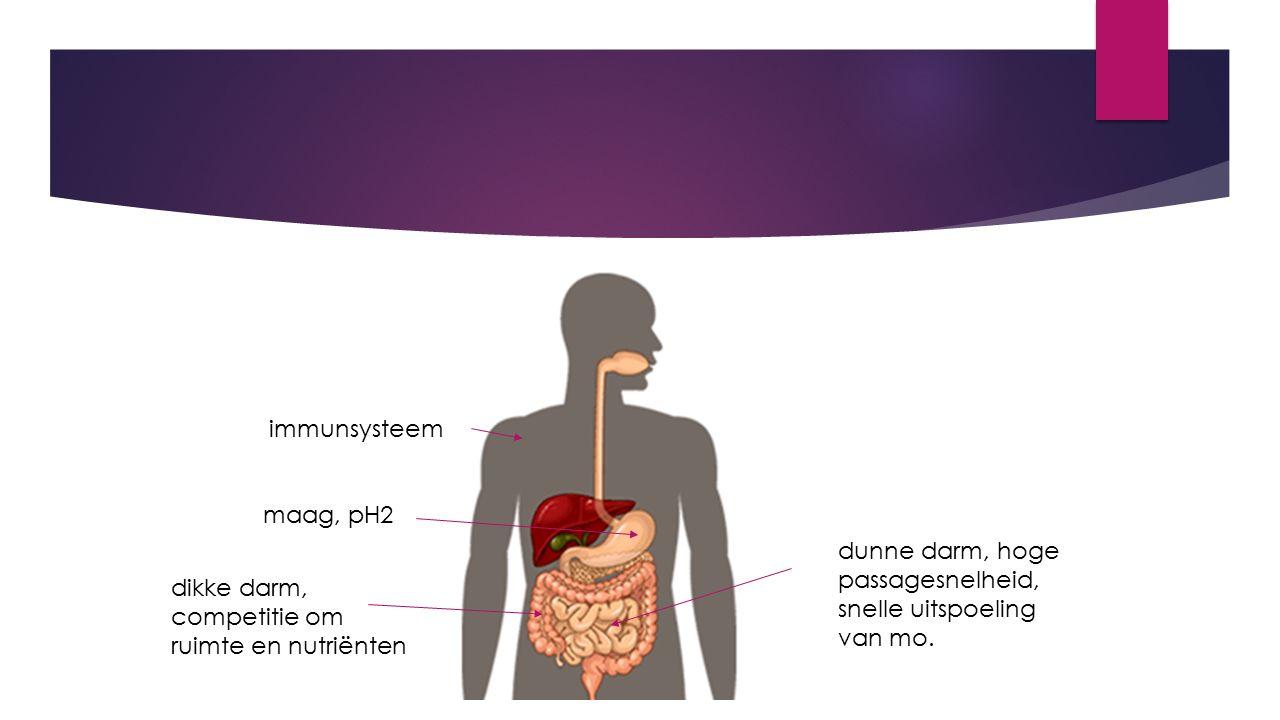 immunsysteem maag, pH2 dikke darm, competitie om ruimte en nutriënten dunne darm, hoge passagesnelheid, snelle uitspoeling van mo.
