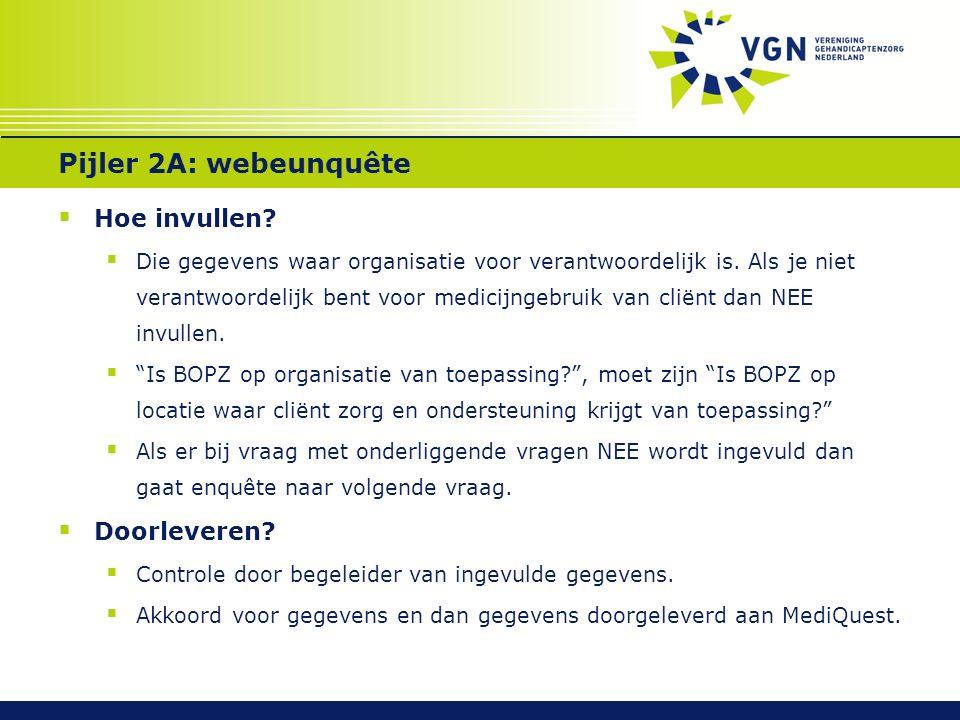 Pijler 2A: webeunquête  Hoe invullen?  Die gegevens waar organisatie voor verantwoordelijk is. Als je niet verantwoordelijk bent voor medicijngebrui
