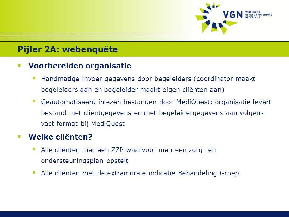 Pijler 2A: webeunquête  Hoe invullen. Die gegevens waar organisatie voor verantwoordelijk is.
