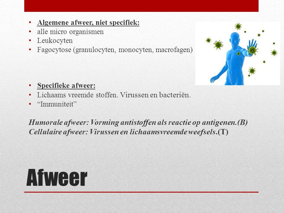Afweer Algemene afweer, niet specifiek: alle micro organismen Leukocyten Fagocytose (granulocyten, monocyten, macrofagen) Specifieke afweer: Lichaams