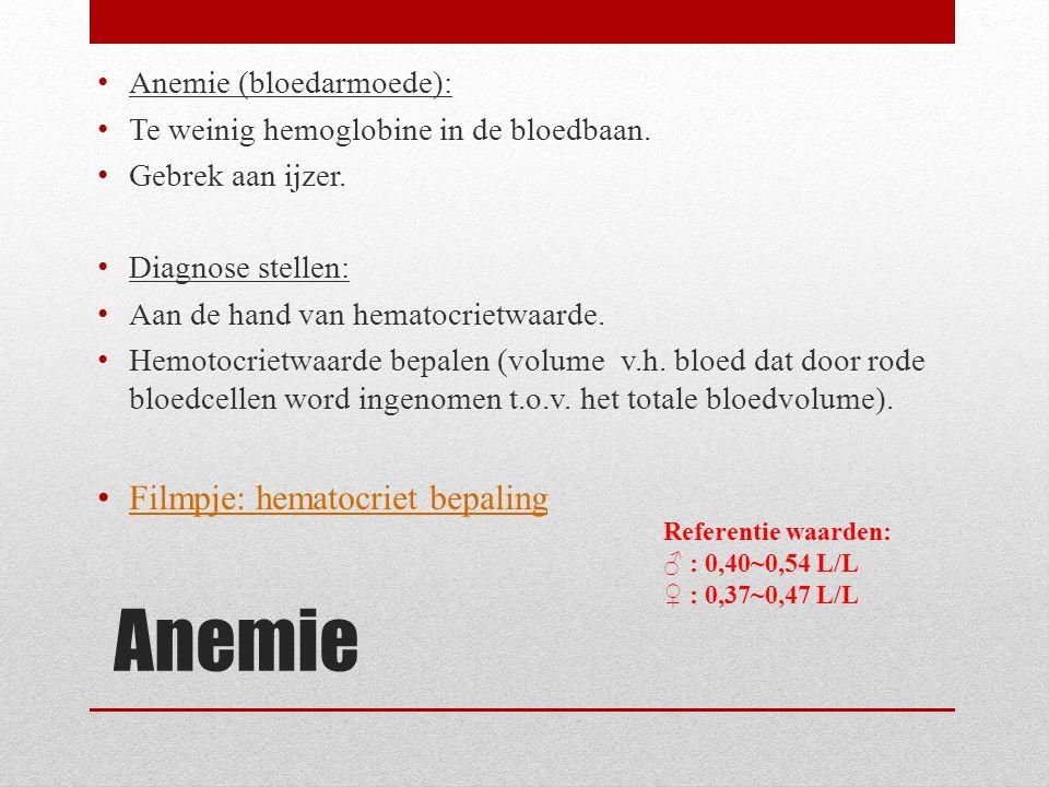 Anemie (bloedarmoede): Te weinig hemoglobine in de bloedbaan. Gebrek aan ijzer. Diagnose stellen: Aan de hand van hematocrietwaarde. Hemotocrietwaarde