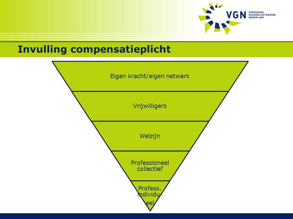 Invulling compensatieplicht Eigen kracht/eigen netwerk Vrijwilligers Welzijn Professioneel collectief Profess. individu- eel