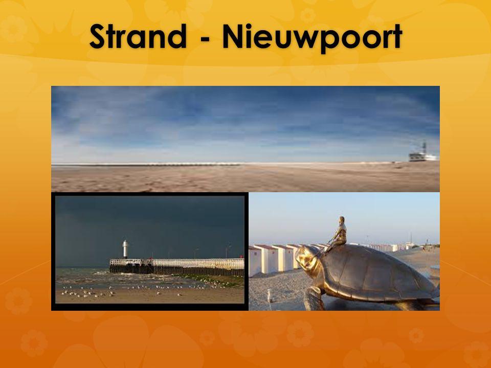 Strand - Nieuwpoort