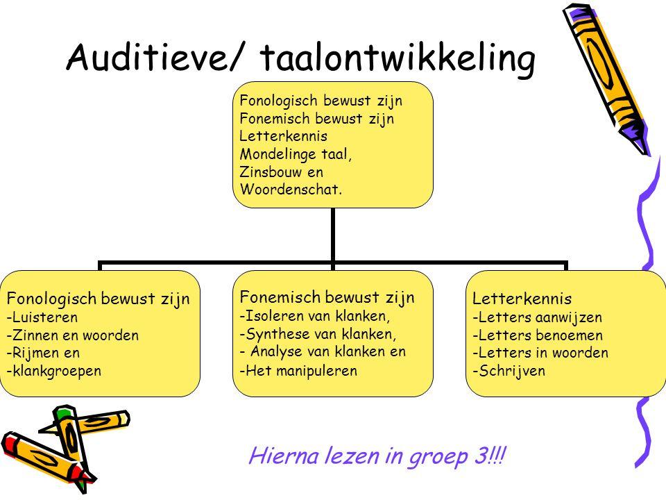 Auditieve/ taalontwikkeling Fonologisch bewust zijn Fonemisch bewust zijn Letterkennis Mondelinge taal, Zinsbouw en Woordenschat.