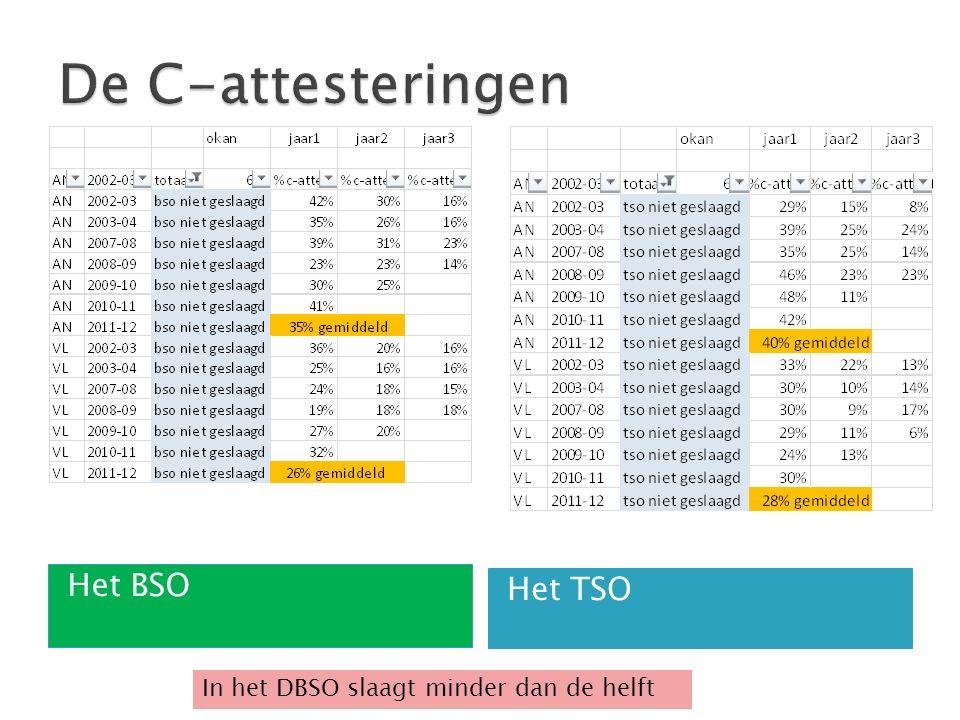 Het BSO Het TSO In het DBSO slaagt minder dan de helft