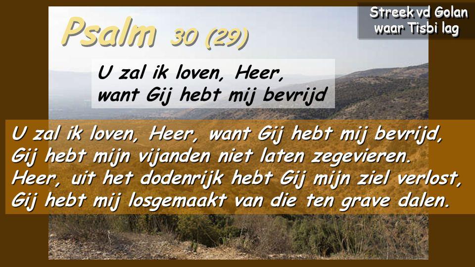 Psalm 30 (29) U zal ik loven, Heer, want Gij hebt mij bevrijd, Gij hebt mijn vijanden niet laten zegevieren.