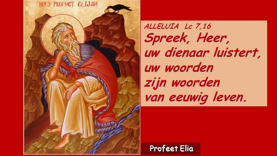 Spreek, Heer, ALLELUIA Lc 7,16 Spreek, Heer, uw dienaar luistert, uw woorden zijn woorden van eeuwig leven.