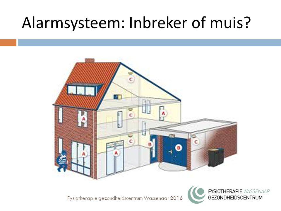 Alarmsysteem: Inbreker of muis? Fysiotherapie gezondheidscentrum Wassenaar 2016