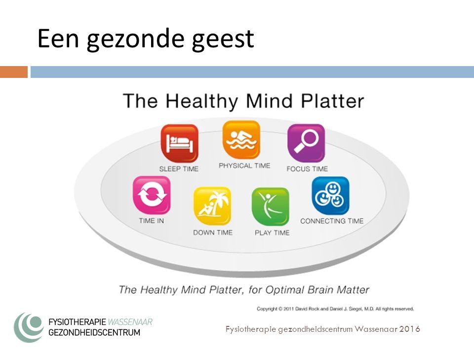 Een gezonde geest Fysiotherapie gezondheidscentrum Wassenaar 2016