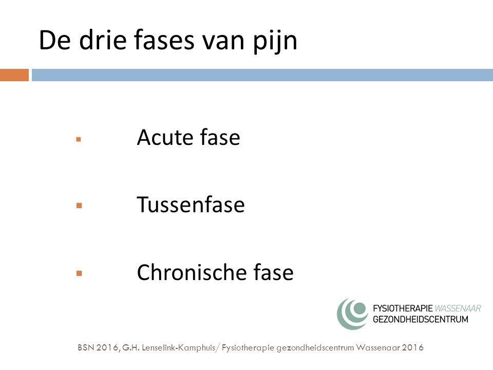 De drie fases van pijn  Acute fase  Tussenfase  Chronische fase BSN 2016, G.H.