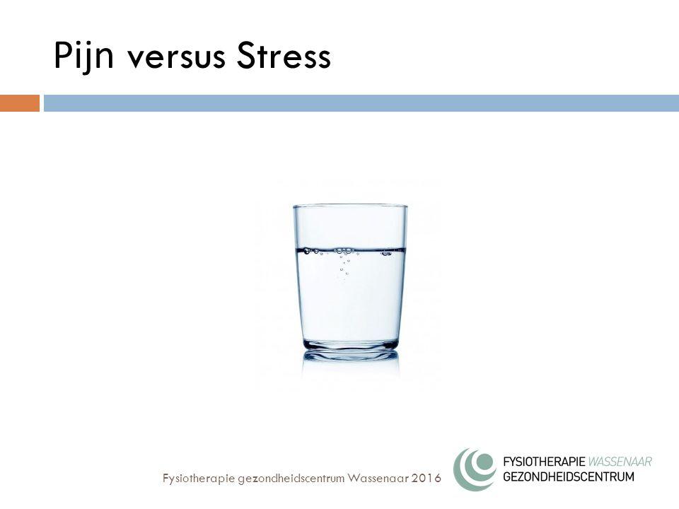 Pijn versus Stress Fysiotherapie gezondheidscentrum Wassenaar 2016