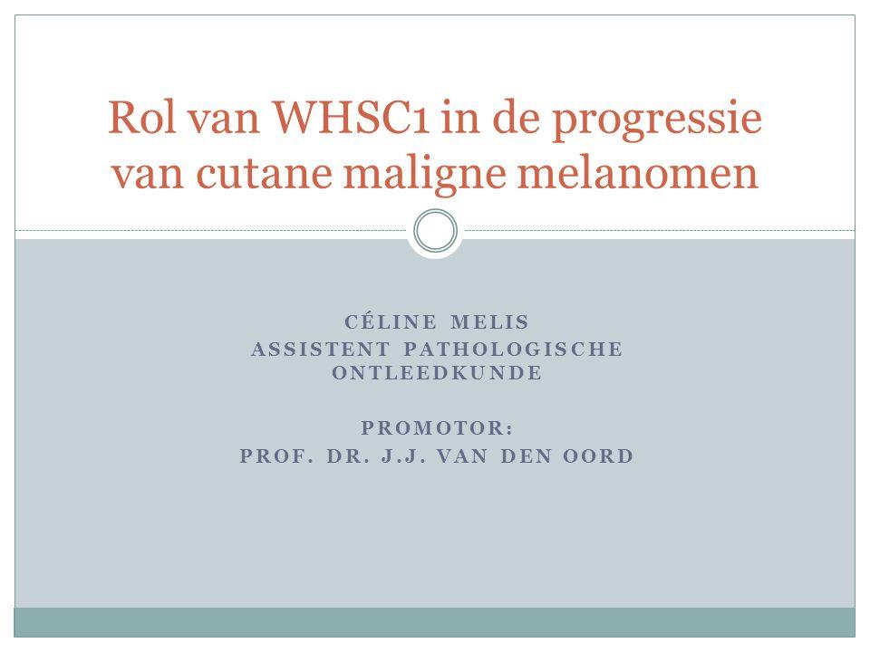 CÉLINE MELIS ASSISTENT PATHOLOGISCHE ONTLEEDKUNDE PROMOTOR: PROF. DR. J.J. VAN DEN OORD Rol van WHSC1 in de progressie van cutane maligne melanomen
