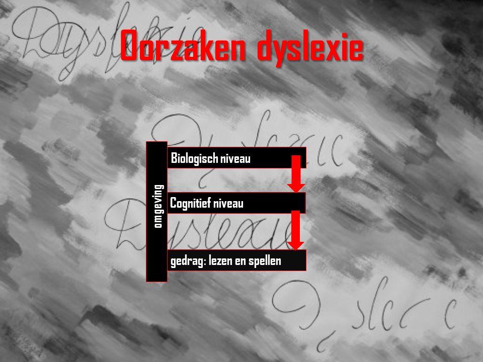 Oorzaken dyslexie Biologisch niveau Cognitief niveau gedrag : lezen en spellen omgeving