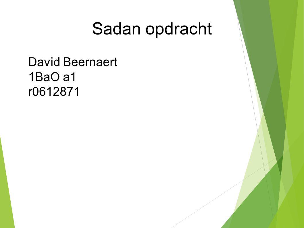 Sadan opdracht David Beernaert 1BaO a1 l r0612871