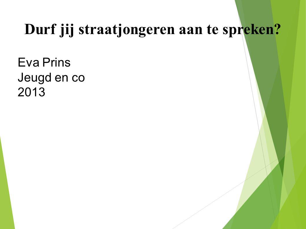 Durf jij straatjongeren aan te spreken Eva Prins Jeugd en co l 2013
