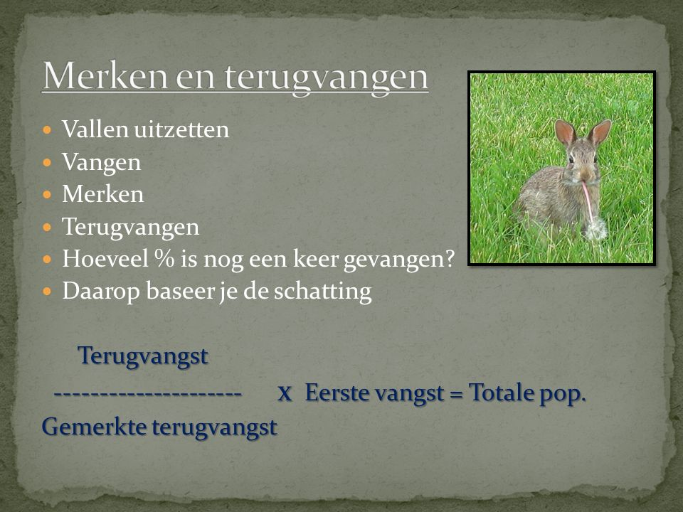Vallen uitzetten Vangen Merken Terugvangen Hoeveel % is nog een keer gevangen.