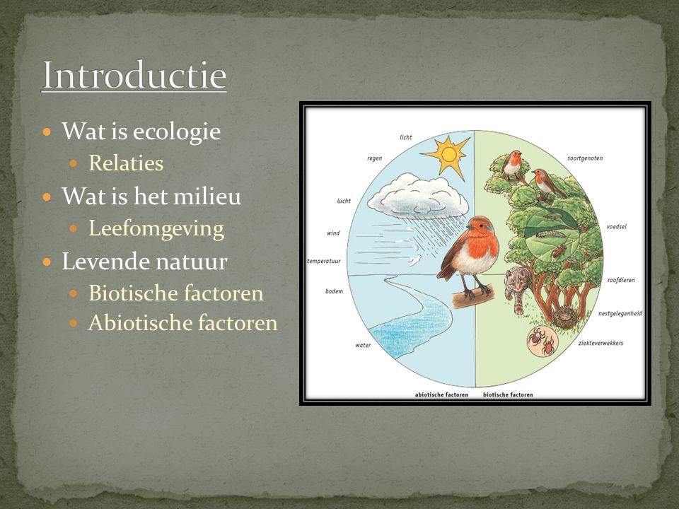 Wat is ecologie Relaties Wat is het milieu Leefomgeving Levende natuur Biotische factoren Abiotische factoren