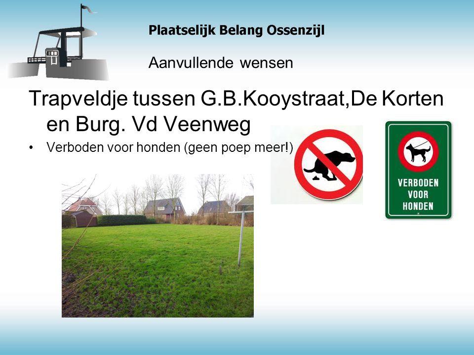 Aanvullende wensen Trapveldje tussen G.B.Kooystraat,De Korten en Burg.