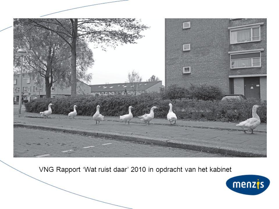 VNG Rapport 'Wat ruist daar' 2010 in opdracht van het kabinet