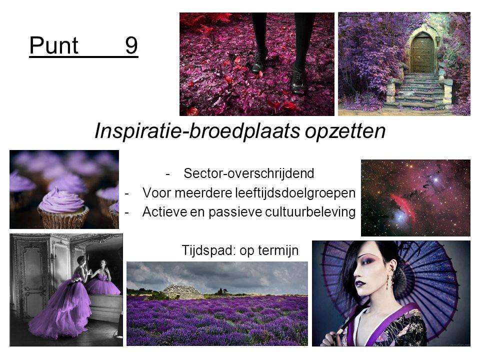Punt9 Inspiratie-broedplaats opzetten -Sector-overschrijdend -Voor meerdere leeftijdsdoelgroepen -Actieve en passieve cultuurbeleving Tijdspad: op termijn