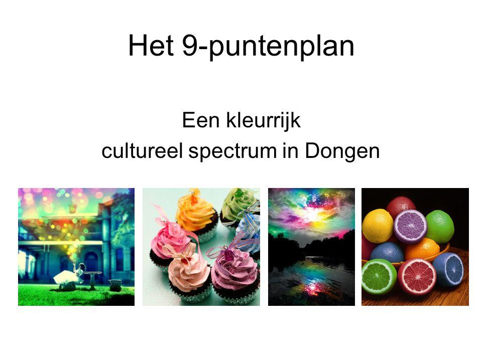 Het 9-puntenplan Een kleurrijk cultureel spectrum in Dongen