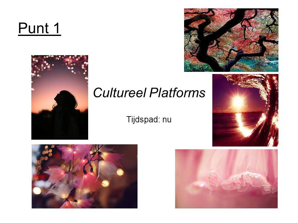 Punt 1 Cultureel Platforms Tijdspad: nu