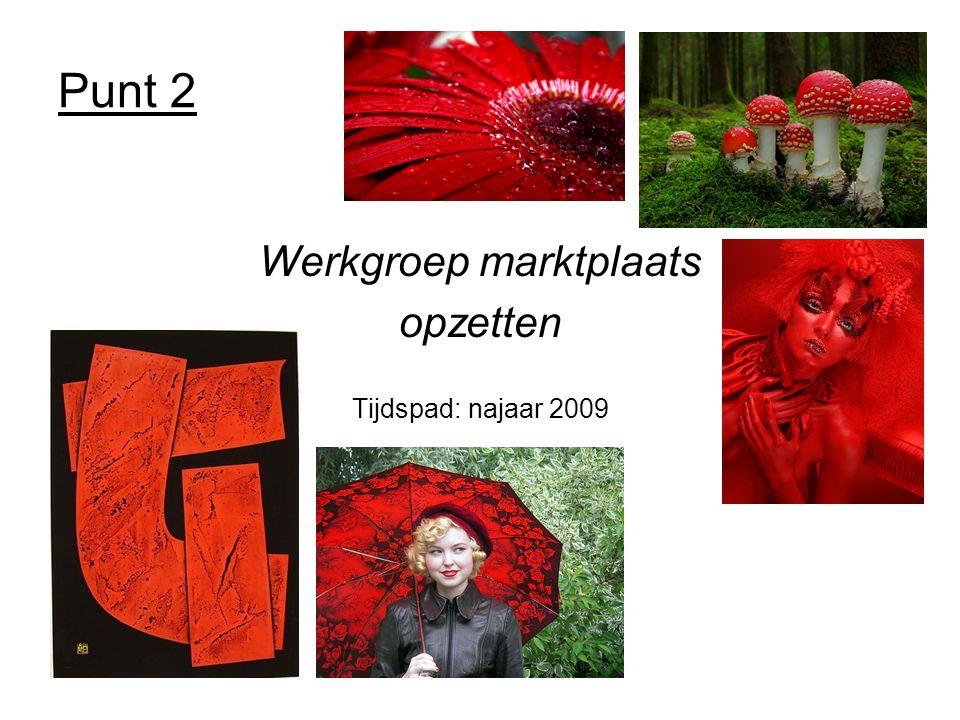 Punt 2 Werkgroep marktplaats opzetten Tijdspad: najaar 2009