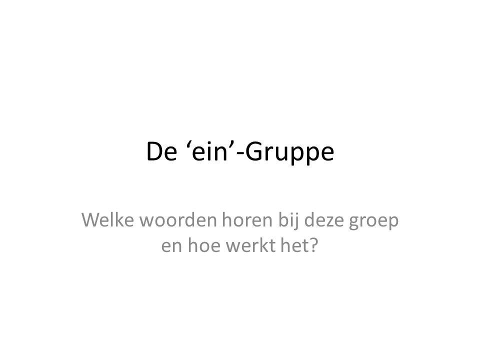De 'ein'-Gruppe Welke woorden horen bij deze groep en hoe werkt het?