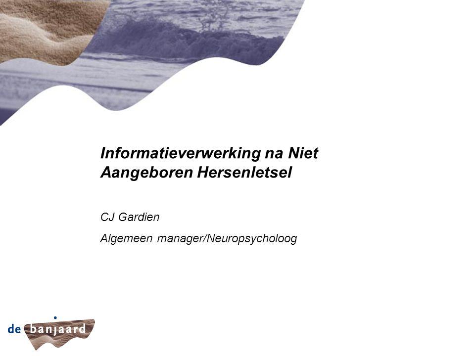 Informatieverwerking na Niet Aangeboren Hersenletsel CJ Gardien Algemeen manager/Neuropsycholoog