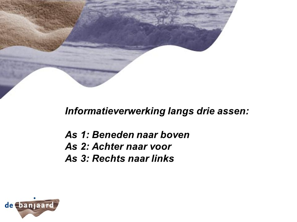 Informatieverwerking langs drie assen: As 1: Beneden naar boven As 2: Achter naar voor As 3: Rechts naar links