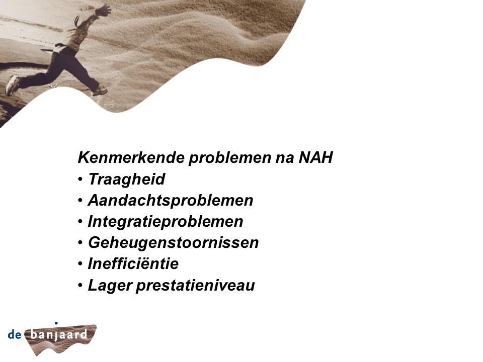 Kenmerkende problemen na NAH Traagheid Aandachtsproblemen Integratieproblemen Geheugenstoornissen Inefficiëntie Lager prestatieniveau