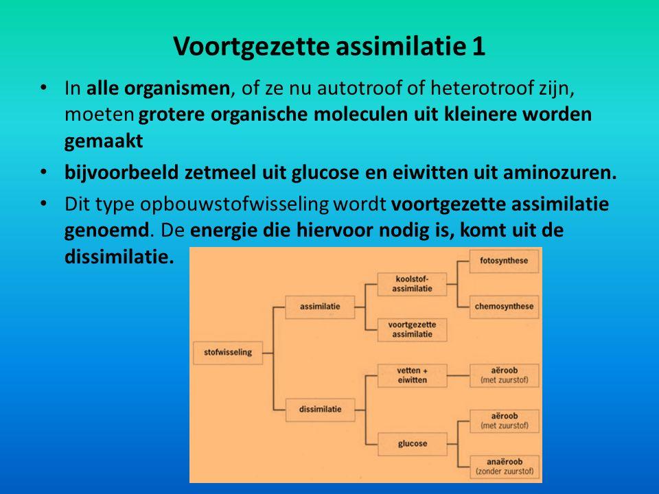 Voortgezette assimilatie 1 In alle organismen, of ze nu autotroof of heterotroof zijn, moeten grotere organische moleculen uit kleinere worden gemaakt