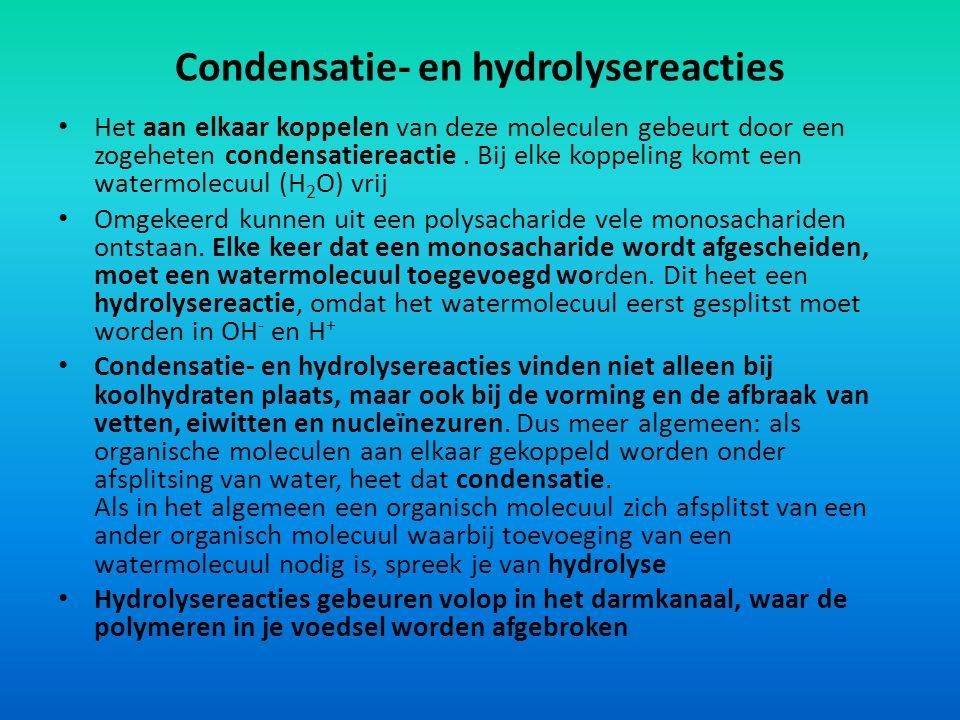 Condensatie- en hydrolysereacties Het aan elkaar koppelen van deze moleculen gebeurt door een zogeheten condensatiereactie. Bij elke koppeling komt ee
